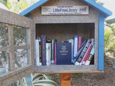 Little free library church